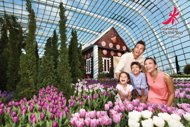 15% Off Admission Tickets in Gardens by the Bay with OCBC Cards