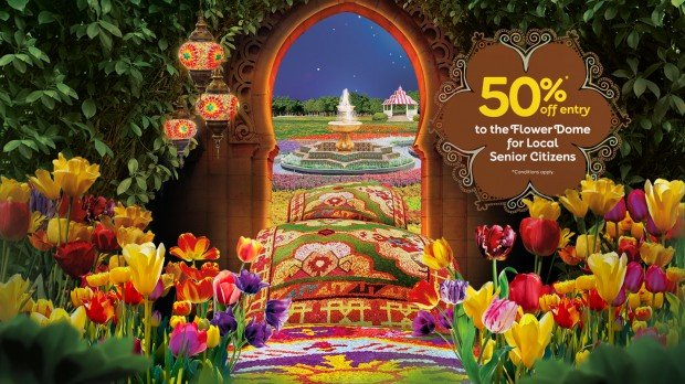50% Off Admission Ticket Exclusive for Senior Citizens in Gardens by the Bay