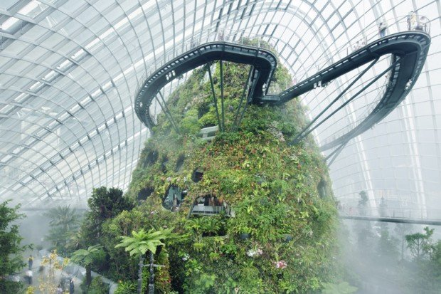 NTUC May Day Promotion: 25% Off or Buy 1 Get 1 FREE in Gardens by the Bay