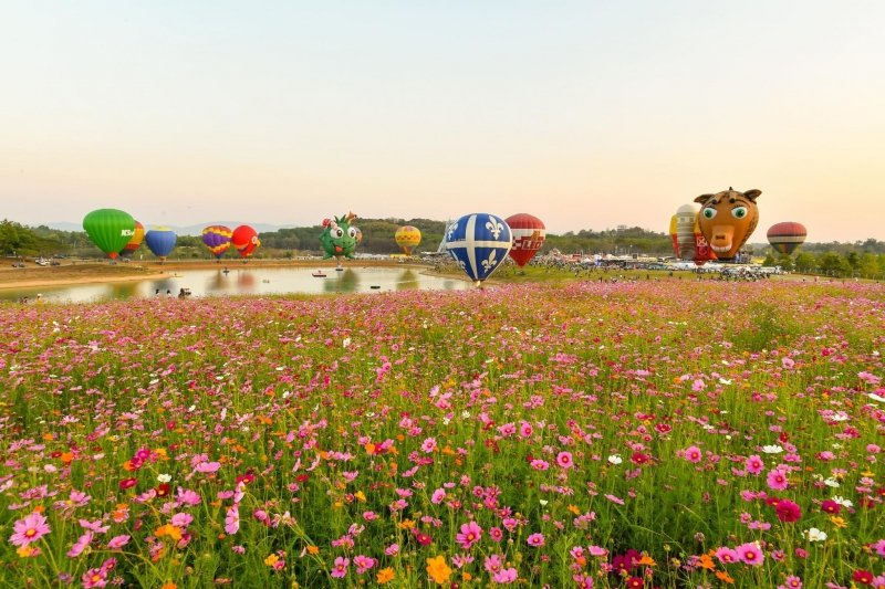 singha park balloon fiesta thailand