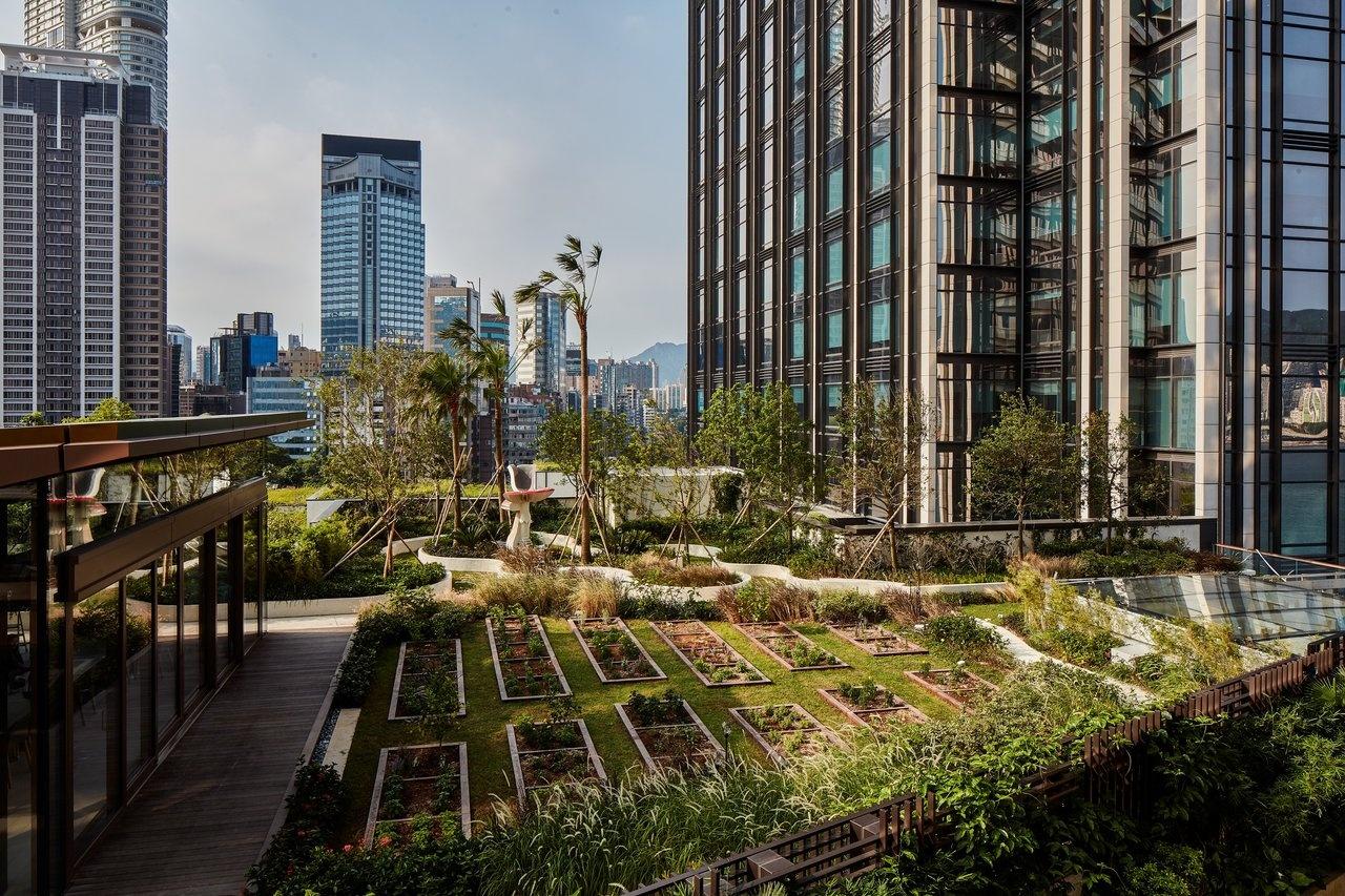 K11 Musea rooftop garden