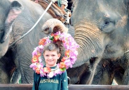 Elephant Safari Package
