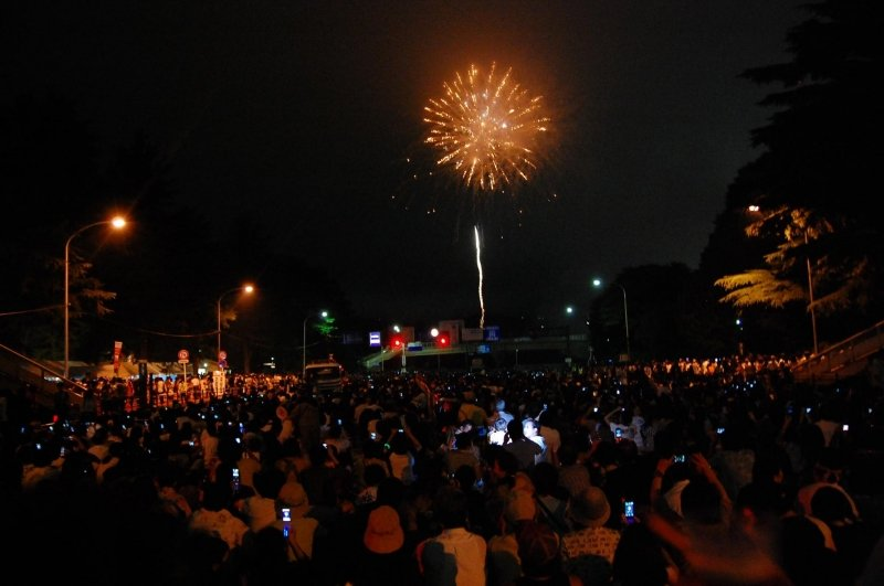 crowd taking photo of fireworks