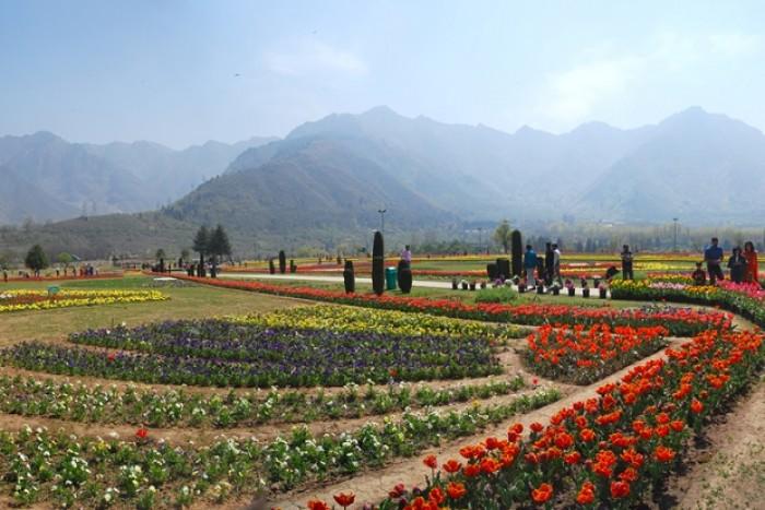 Srinagar, India