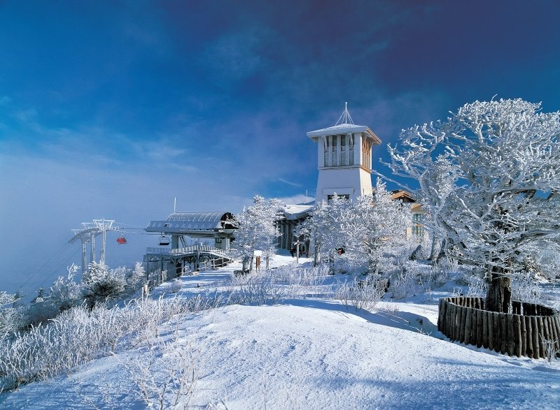yongpyong resort one of the top places for skiing in korea