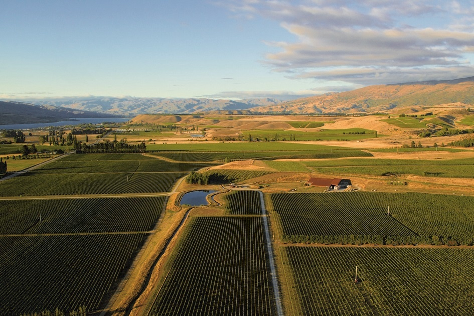 Amisfield Estate, Central Otago