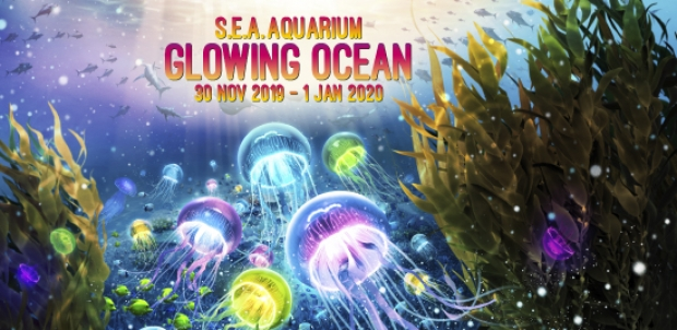 S.E.A. Aquarium Glowing Ocean Family Bundle at SGD90