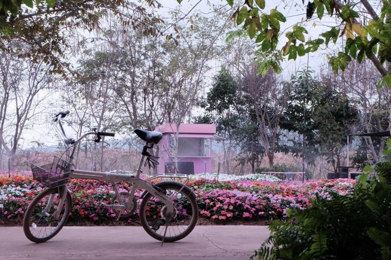 flora park thailand