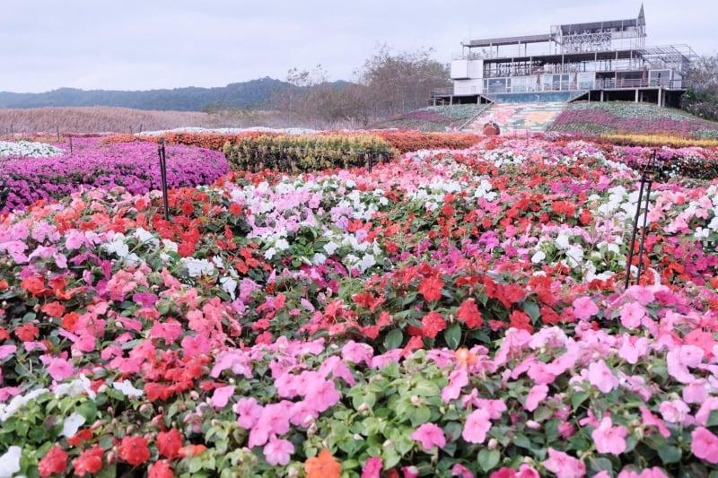 flora park thailand best flower fields