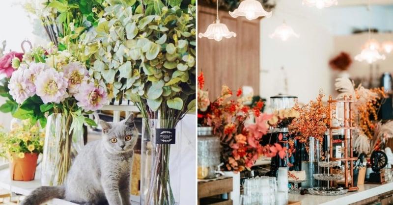 best cafes singapore Café de Nicole's Flower