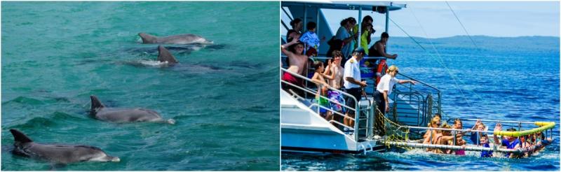 Lịch trình du lịch Úc 8N7D: Ngày 3: Vịnh Jervis