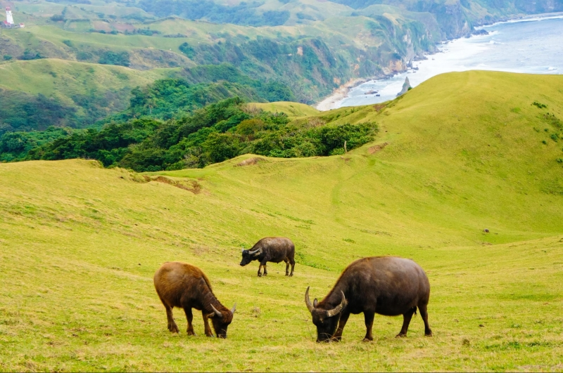 philippines new normal: batanes