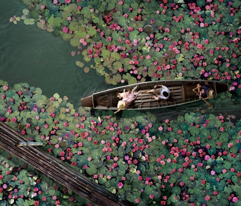 Talay Bua Daeng Red Lotus Sea thailand