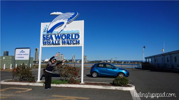 địa điểm du lịch ở Gold Coast