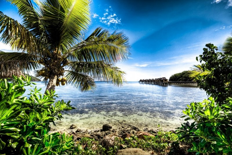 landscape shot of fiji