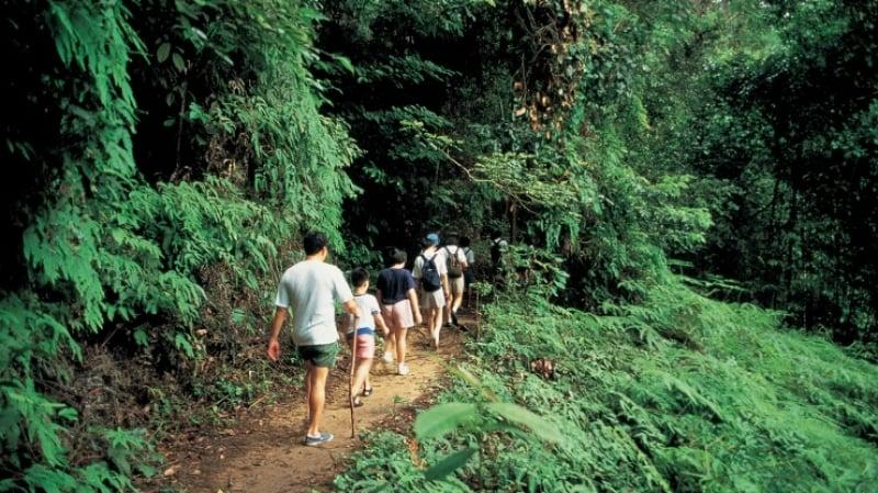 hiking nature trails singapore