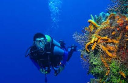 Scuba Diving Lessons