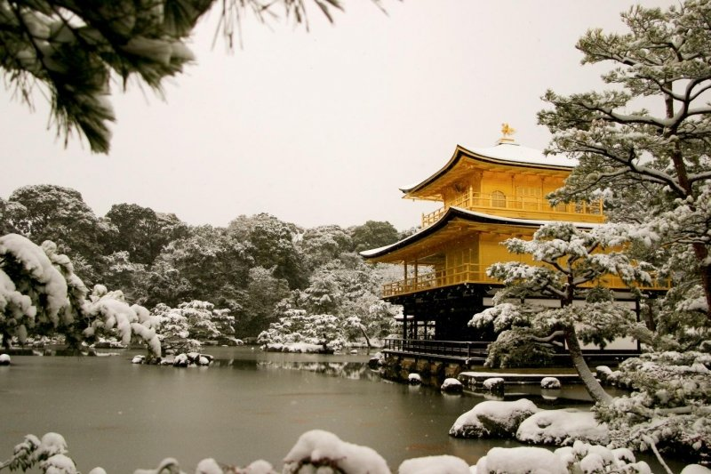 Winter Wonder-Japan: Visit The Cute Snow Monkeys & More With Exclusive JTB Travel Packages