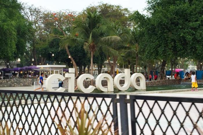 Cicada weekend market