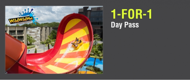 1-FOR-1 Day Pass in WildWildWet with your NTUC Card