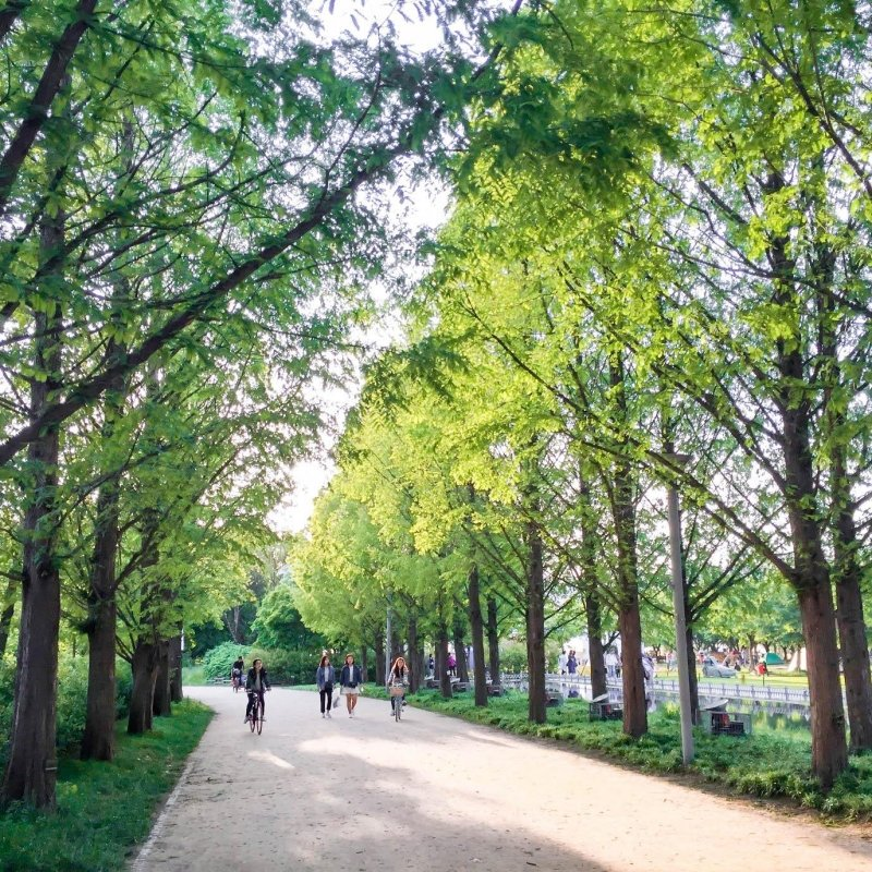 nature parks in seoul