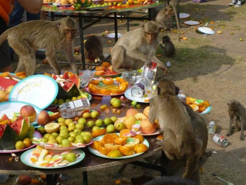 Lễ Hội Đặc Biệt Tại Thái Lan
