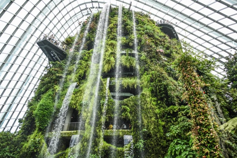 Indoor waterfall at Cloud Forest, Gardens by the Bay
