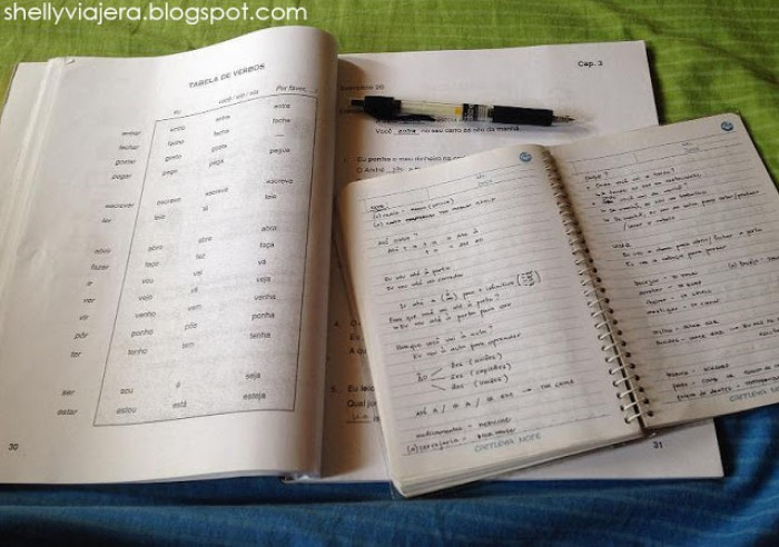 learning foreign language