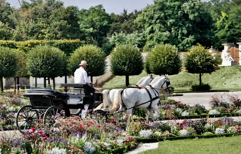 Schloss Hof, Carriage Ride