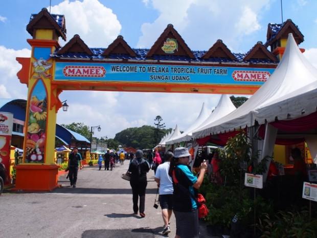 Chơi gì ở Malacca