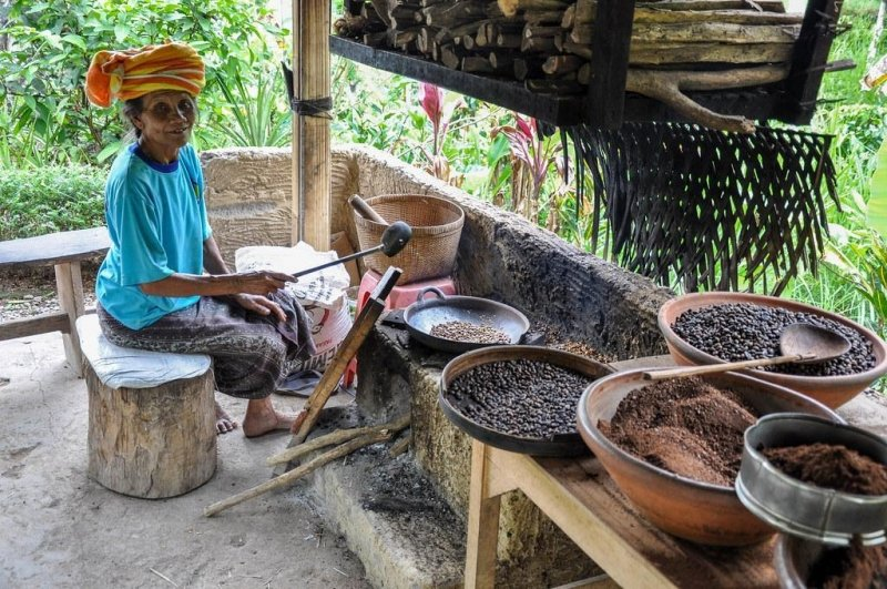 things to do in ubud: coffee plantation