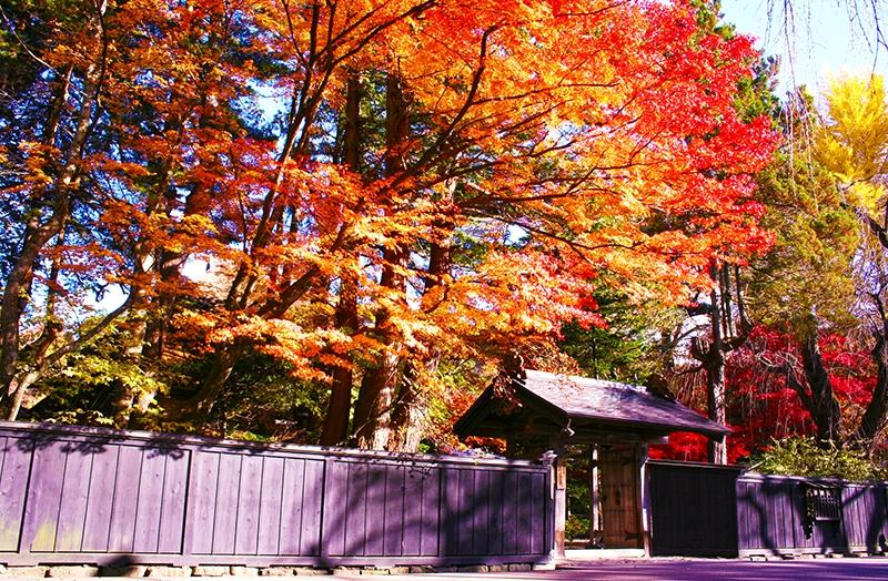 Kakunodate Samurai Residences