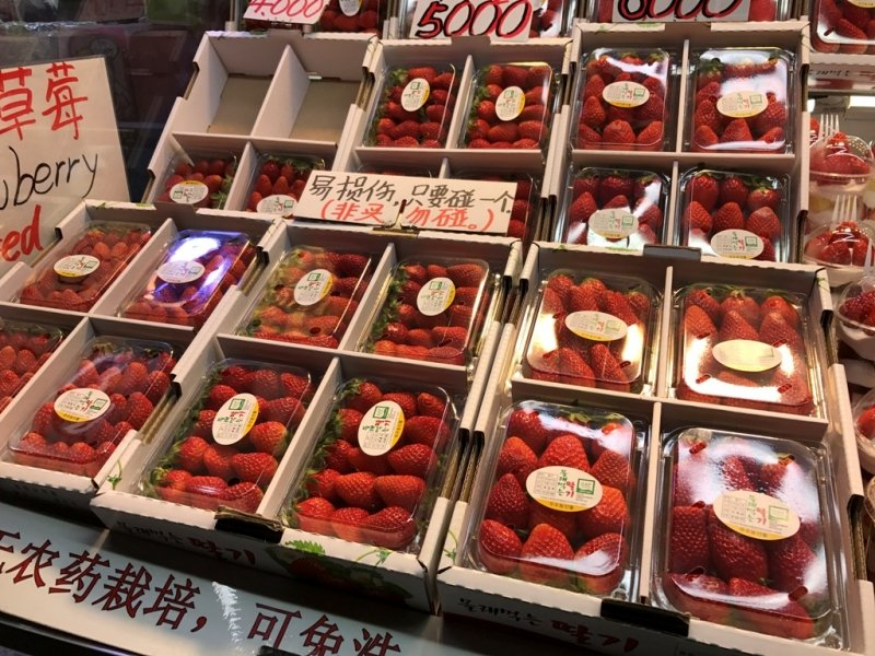 korean fruits in season