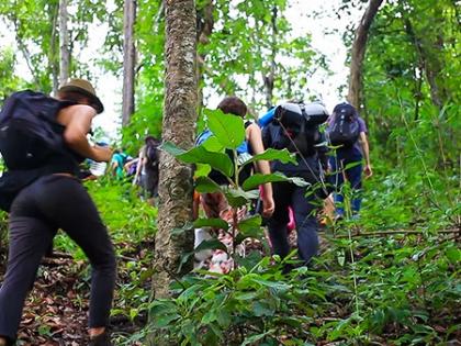 Santelmo Eco Trail