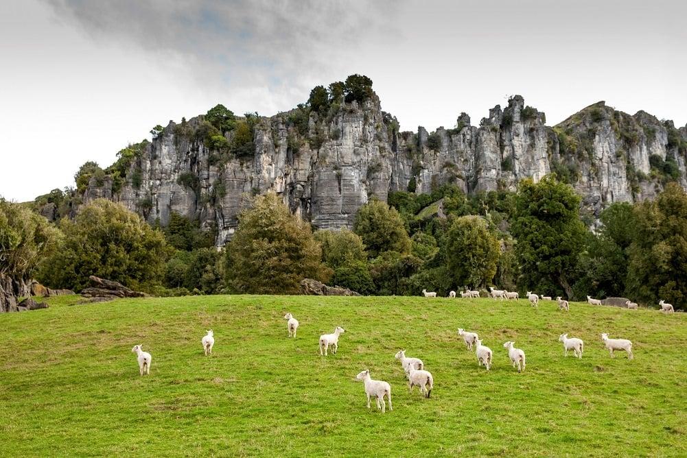 Mangaotaki Rocks