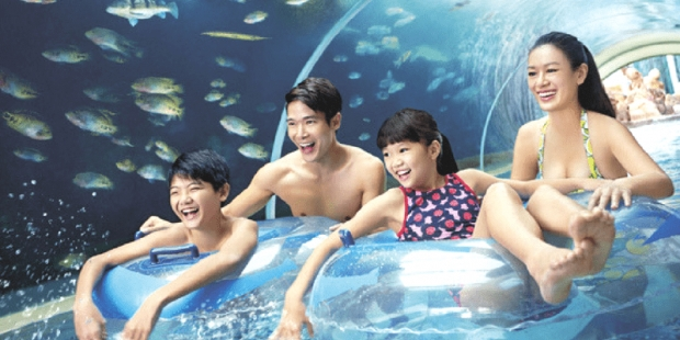 Mastercard® Exclusive: Buy Adventure Cove Waterpark Adult One-Day Ticket at SGD38 and get FREE SGD5 Meal Voucher + Souvenirs (worth SGD19.80)