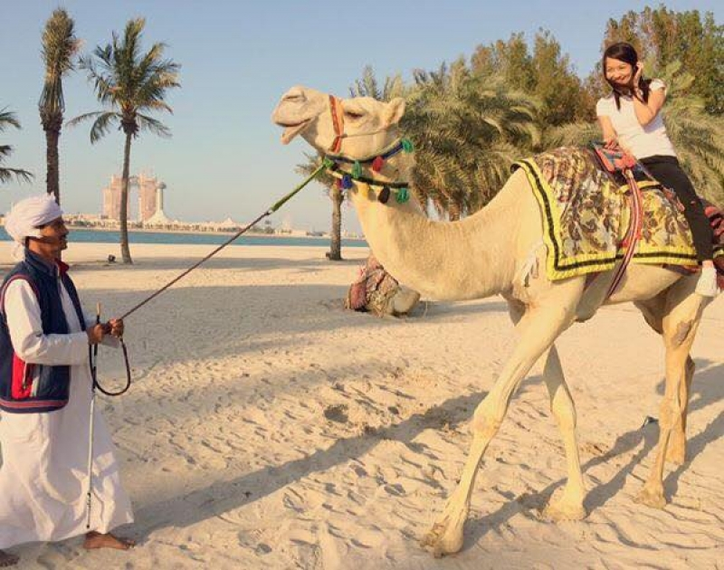 travelling for a living: abu dhabi