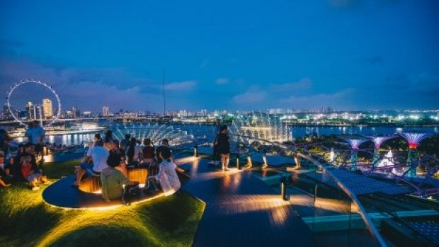 Evening Special: Supertree Observatory Promotion in Gardens by the Bay