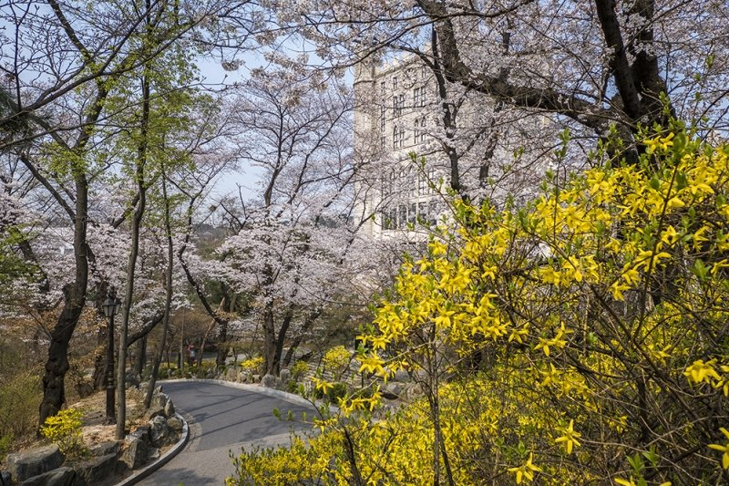 underrated places in south korea Kyung Hee University