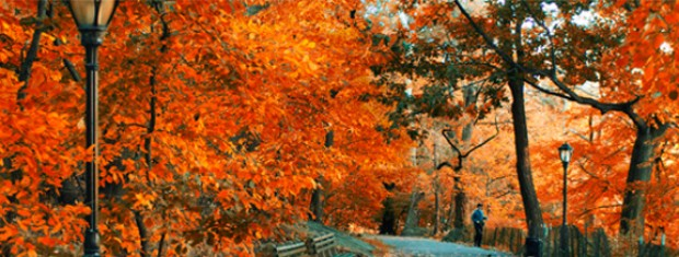 Fly to Europe and Enjoy Autumn with Swiss Airlines from SGD986