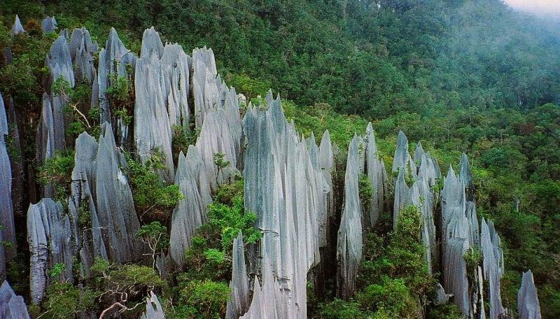 the pinnacles of gunung mulu