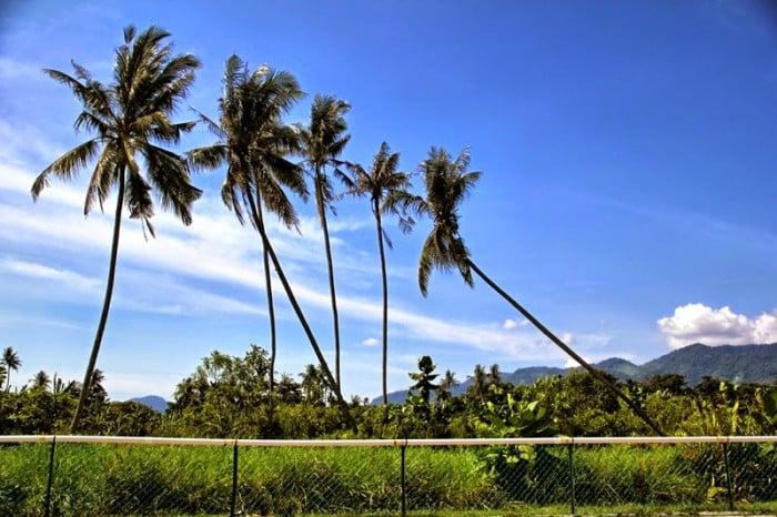 Balik Pulau