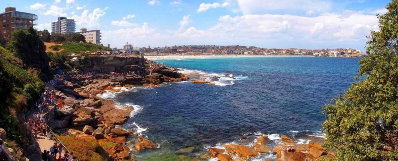 things to do in sydney: bondi to coogee walk