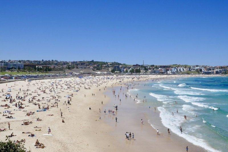 things to do in syndey: bondi beach