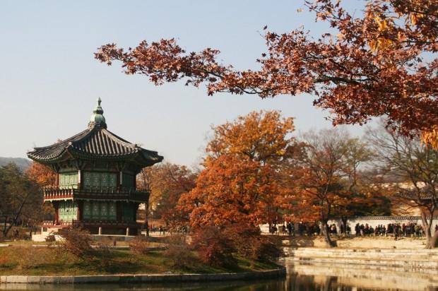 fall foliage in Gyeongbokgung