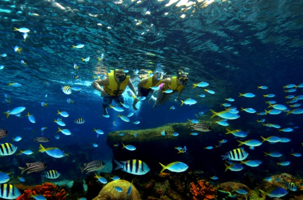 MasterCard® Online Exclusive - Adventure Cove Waterpark Family Bundle