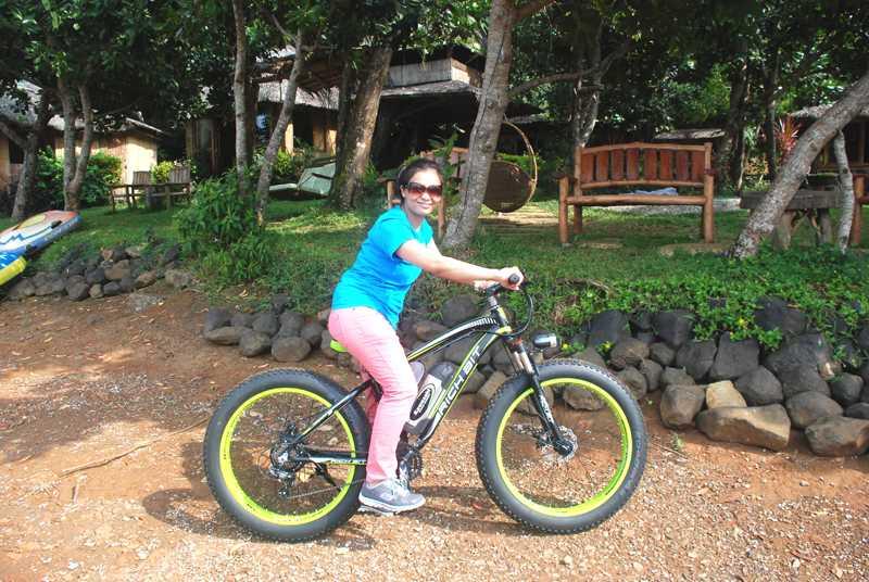 eco saddle electronic bike