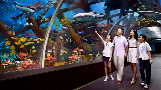 Enjoy Amazing Privileges in Resorts World Sentosa with Maybank
