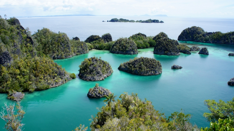 travel guide raja ampat