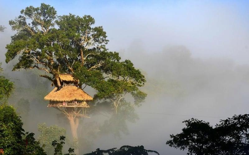 The Gibbon Experience, Huay Xai, Lào
